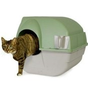 The Best Litter Box