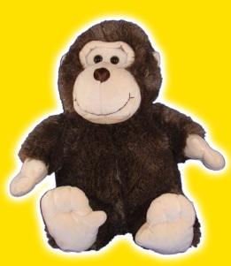 TZ Monkey